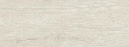 plitka-1590-woodpassion-ice-r44p-493-v1